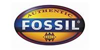 fossil pozzuoli
